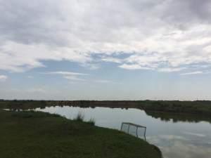 fresh water of grasslands