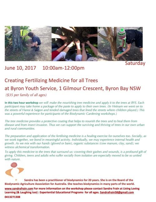 tree medicine.jpg