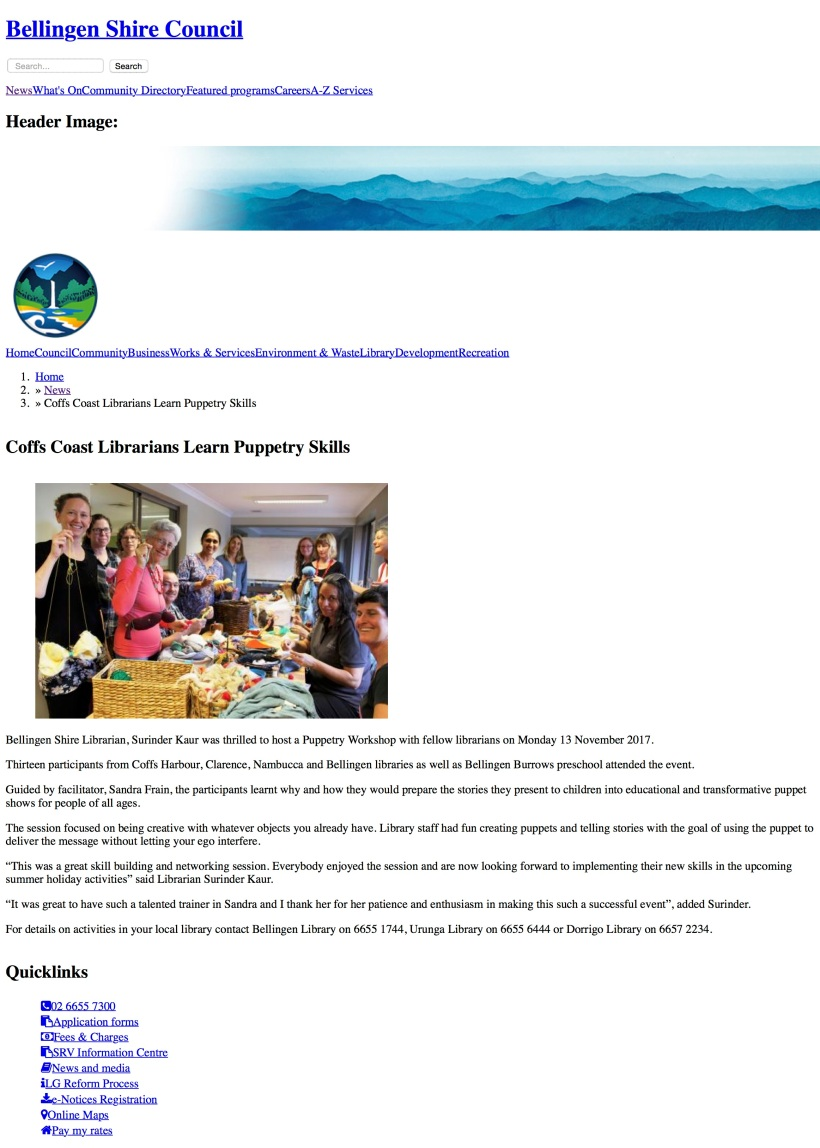 Coffs Coast Librarians Learn Puppetry Skills | Bellingen Shire Council.jpg